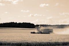 совмещенная жатка хлебоуборки стоковая фотография rf