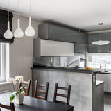 Совмещенные столовая и кухня Стоковое Изображение RF