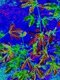 Современная абстрактная предпосылка природы, сад конспектов стоковое изображение rf