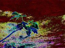 Современная абстрактная предпосылка природы, сад конспектов стоковая фотография rf