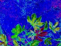 Современная абстрактная предпосылка природы, сад конспектов стоковые фото