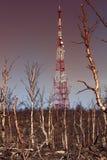 Современная башня радиосвязи и разрушенная тундра леса Стоковое Изображение RF