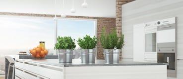 Современная белая кухня с ароматичными заводами, 3d представляет иллюстрацию бесплатная иллюстрация