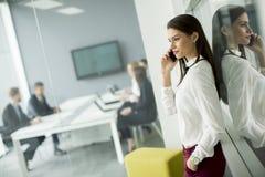 Современная бизнес-леди используя мобильный телефон пока бизнесмены Стоковые Изображения RF