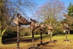 Современная скульптура в YSP Стоковое фото RF