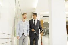 Современные бизнесмены в офисе Стоковое фото RF
