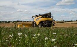 Современные новые урожаи вырезывания жатки зернокомбайна Голландии Стоковые Изображения