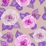 Современные розы акварели с картиной листьев безшовной на беже иллюстрация вектора