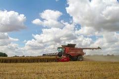 Современные урожаи вырезывания жатки зернокомбайна случая Стоковые Фотографии RF