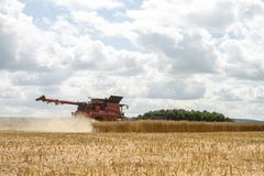 Современные урожаи вырезывания жатки зернокомбайна случая Стоковая Фотография
