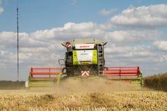 Современные урожаи вырезывания жатки зернокомбайна claas стоковые изображения rf