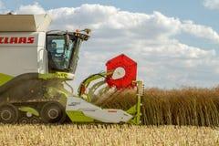 Современные урожаи вырезывания заголовка жатки зернокомбайна claas Стоковая Фотография RF