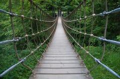 Современный вид висячего моста внутри леса Стоковое Изображение RF