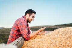 Современный комбайн жать детали - фермеров людей наслаждаясь сжатой мозолью стоковые фотографии rf