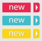 Современный мягкий шаблон дизайна цвета. Стоковые Изображения