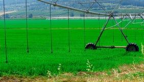 Современный обрабатывать землю Заводы разбивочной системы опылительного орошения оси моча в зеленом поле стоковая фотография rf
