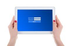 Современный ПК таблетки с панелью имени пользователя на экране в женщине вручает isol Стоковая Фотография RF