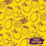 Современный профессиональный вектор установил свеже сделанный с реальными плодоовощами Картина плодоовощ иллюстрация вектора