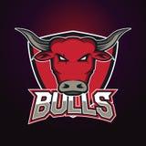 Современный профессиональный логотип для команды спорта Талисман Bull Быки, символ вектора на темной предпосылке Стоковая Фотография