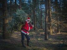 Современный Санта Клаус в сосновом лесе с большим tre рождества стоковые фото