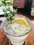 Сода лимона стоковые изображения