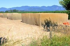 Содержать урожаи фермы в запретный зона стоковые фото