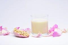 Соевое молоко для любящих здоровь девушек Стоковая Фотография RF