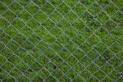 соединение травы загородки предпосылки цепное Стоковое Изображение RF