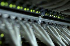 Соединения кабелей интернета с серверами Центры даты сервера Стоковая Фотография RF