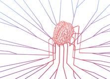 Соединенная линия мозг бесплатная иллюстрация