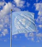 соединенная нация флага Стоковое Изображение RF