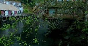 Соединенные Штаты, Аляска, городок Ketchikan, зеленый, небольшой поток, улица заводи видеоматериал
