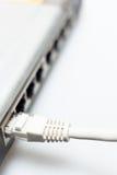 соединенный кабелем переключатель сети lan эпицентра деятельности Стоковые Изображения RF