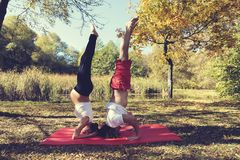 Соедините делать йогу в беременной женщине парка города осени вверх ногами Стоковые Фотографии RF