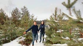 Соедините иметь потеху в лесе зимы они бегут через снег и смех Камера двигает рождество веселое сток-видео