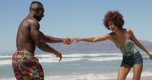 Соедините танцевать совместно на пляже в солнечности 4k сток-видео