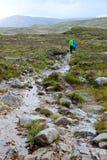 Соедините hiking вдоль тропки на ненастный день Стоковое Фото