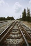 Соединение железной дороги с зеленым деревом на левой стороне и правильной позиции железной дороги Фильтрованное изображение Стоковая Фотография