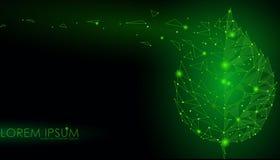 Соединенная линия лист пункта точек треугольника Концепция природы Eco на темной ой-зелен предпосылке освещает геометрическое ill Стоковые Изображения