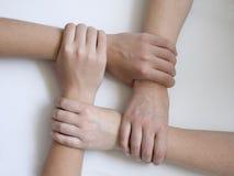 соединенные руки Стоковые Изображения