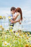 соедините влюбленность Стоковая Фотография RF