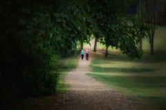 соедините гулять пожилых людей Стоковые Изображения RF