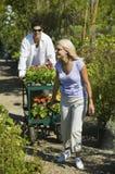 Соедините идти на путь в питомнике завода вытягивая тележку цветков Стоковое фото RF