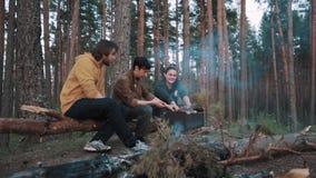 Соедините сидеть на упаденных древесинах имени пользователя на пикнике, мужской друг приходит внутри акции видеоматериалы