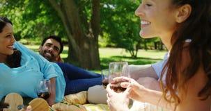 Соединяет взаимодействовать друг с другом пока имеющ красное вино в парке видеоматериал