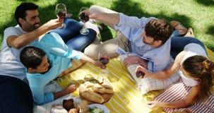 Соединяет взаимодействовать друг с другом пока имеющ красное вино в парке акции видеоматериалы