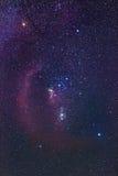 Созвездие Ориона Стоковые Изображения RF