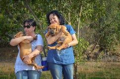 Созретые женщины сжимают 2 щенят boerboel стоковая фотография rf
