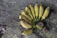 Созретые желтые бананы Стоковые Изображения RF