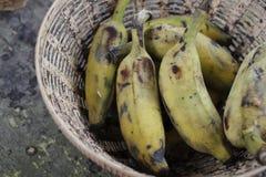 Созретые зеленые бананы Стоковое Изображение RF